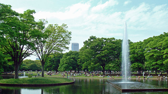 Yoyogi Park, the largest park in Tokyo, is now harbouring infectious mosquitoes.
