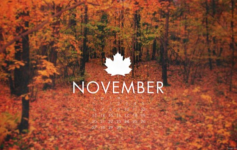 November Hits and Misses