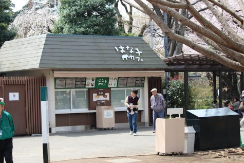 "The ""Hanako Cafe"" dedicated to their long-admired elephant."
