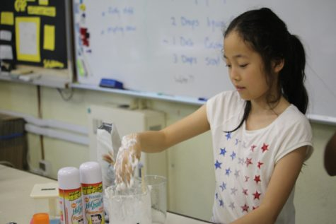 Simply scientific fun with Oobleck.