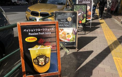 How Eco-Friendly is Your Favorite Cafe in Hiroo?