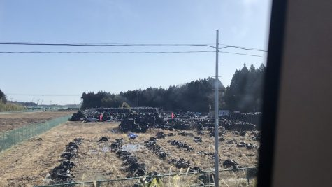 Radioactive soil is packed into black plastic bags.