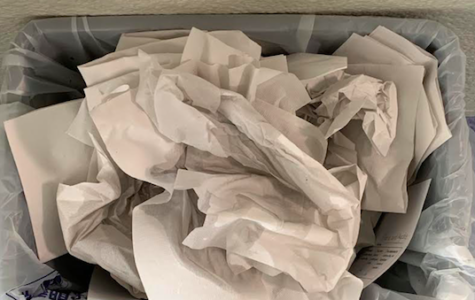 The double-edged sword: Are we really disposing of less trash?