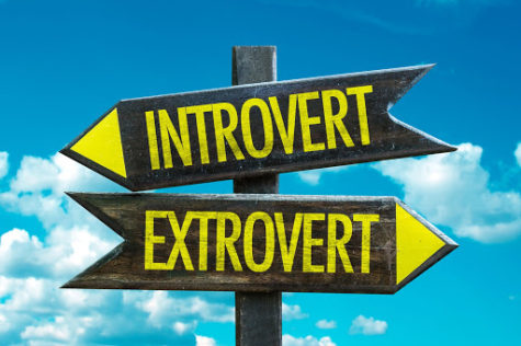 Introverts are people who lose energy, or get tired from social interactions. On the other hand, extroverts gain energy from social interactions.